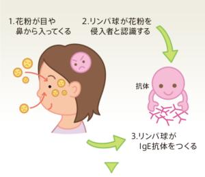 image-花粉症の対策に | よねなが治療院